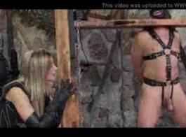 سكس شيميل السجين مقاطع فيديو مجانية - إباحية مجانية على Comparte