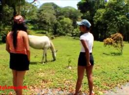 مارس الجنس الحصان الديك بطل أسبن راي عشيق الساخنة