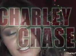 تشارلي تشيس في طبعة تفكك الأب: لبؤة ديكرز كبيرة