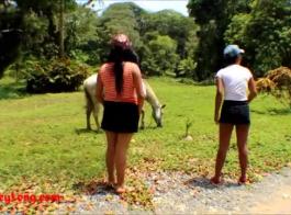 xxnxتزاوج الخيول مع الحمير