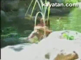 فيديو 3 نهر بوخارستي